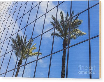 Palm Trees Reflection On Glass Office Building Wood Print by Paul Velgos
