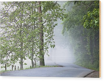 Path Into The Fog Wood Print by Andrew Soundarajan
