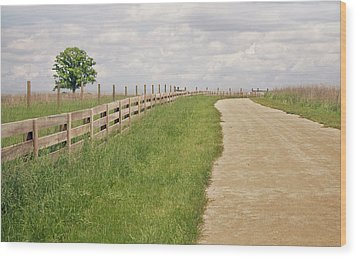 Pathway Surrounded By Wooden Fence Wood Print by Kathryn Froilan