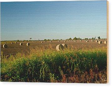 Peanut Bales In Field Wood Print by Douglas Barnett