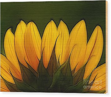 Petales De Soleil - A12 Wood Print by Variance Collections