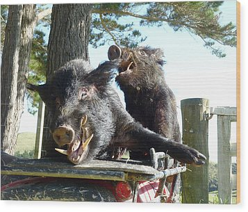 Piggy Back Smiley Hitch Hikers Wood Print by Dianne  Connolly