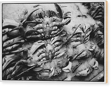 Pike Place Crab Wood Print by Tanya Harrison