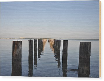 Pilings From An Old Pier Wood Print by Bill Cannon
