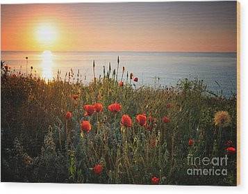 Poppies In The Sunrise Wood Print by Ionut Hrenciuc