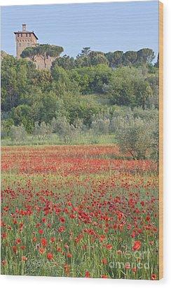 Poppy Field Wood Print by Rob Tilley