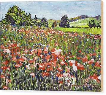 Poppy Fields In France Wood Print by David Lloyd Glover