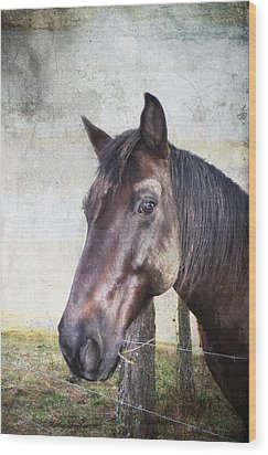 Portrait Of A Horse Series V Wood Print by Kathy Jennings