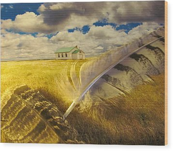 Prairie Feathers Wood Print by Lori  Secouler-Beaudry