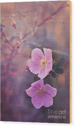 Prickly Rose Wood Print by Priska Wettstein