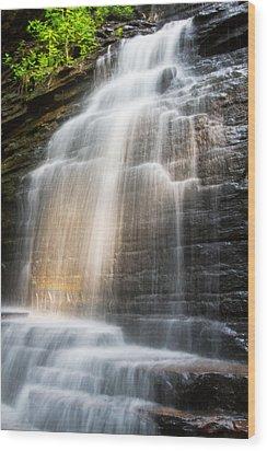 Promise Falls Wood Print by Debra and Dave Vanderlaan