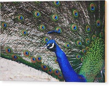Proud Peacock Wood Print by Sheryl Cox