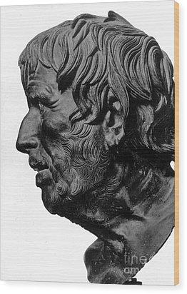 Pseudo-seneca Wood Print by Granger