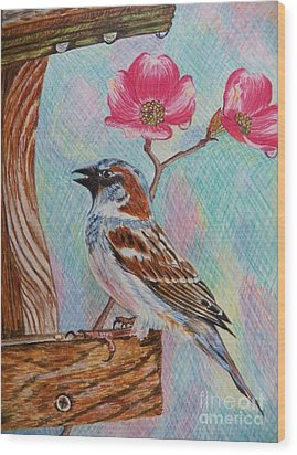 Ptg   Sparrow With Pink Dogwood In The Rain Wood Print by Judy Via-Wolff