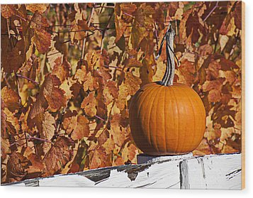 Pumpkin On White Fence Post Wood Print by Garry Gay