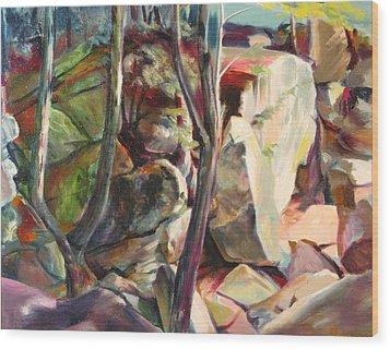 Purgatory Chasm Wood Print by Sid Solomon