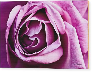 Purple Folds Wood Print by Christopher Holmes