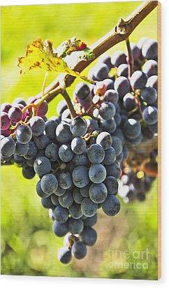 Purple Grapes Wood Print by Elena Elisseeva