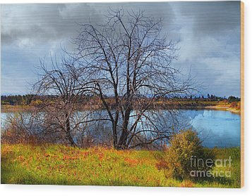 Quarry Lakes In Fremont California . 7d12636 Wood Print by Wingsdomain Art and Photography