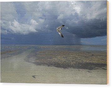 Rain Falls From A Huge Cloud Wood Print by Raul Touzon