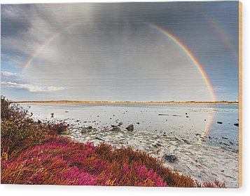 Rainbow By The Lake Wood Print by Evgeni Dinev