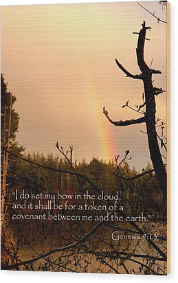 Rainbow Scripture Genesis 9 Wood Print by Cindy Wright