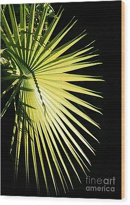 Rays Of Light Wood Print by Sabrina L Ryan