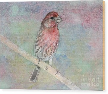 Ready To Sing My Song Wood Print by Betty LaRue