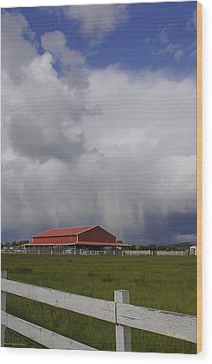 Red Barn And Stormy Sky Wood Print by Mick Anderson