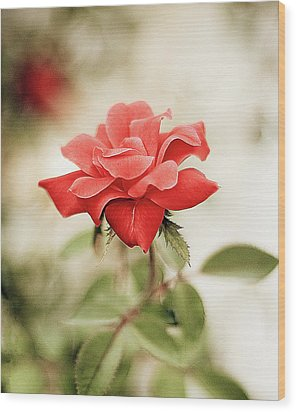 Red Rose Wood Print by Natalia Ganelin