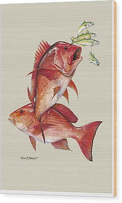 Red Snapper Wood Print by Kevin Brant