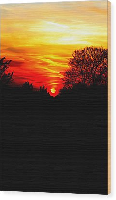 Red Sunset Vertical Wood Print by Jasna Buncic