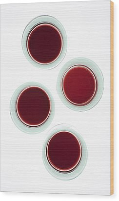 Red Wine Glasses Wood Print by Frank Tschakert