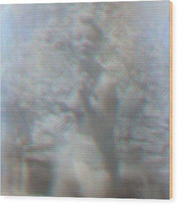 Reminiscent 03 Wood Print by Li   van Saathoff
