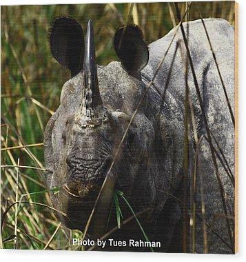 Rhino Wood Print by Tues Rahman