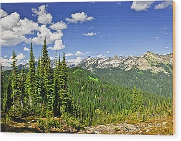 Rocky Mountain View From Mount Revelstoke Wood Print by Elena Elisseeva