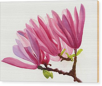 Rose Violet Magnolia Painting By Sharon Freeman