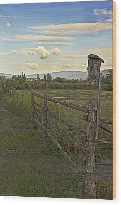Rural Birdhouse On Fence Wood Print by Mick Anderson
