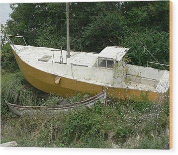 Sailboat Shipwrecked Wood Print by Amanda Lenard