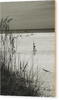 Sanibel Island Florida Wood Print by Susanne Van Hulst