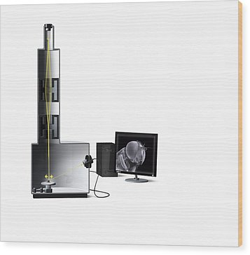 Scanning Electron Microscope, Artwork Wood Print by Claus Lunau