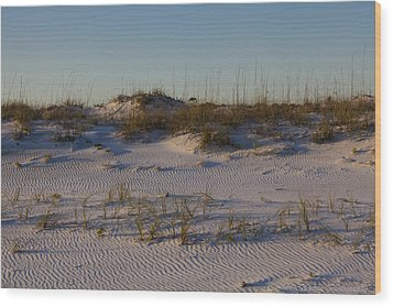 Seaside Dunes 4 Wood Print by Charles Warren
