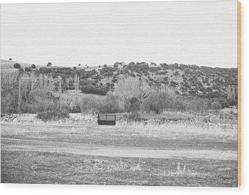 Segovia Gate Wood Print by Ariane Moshayedi