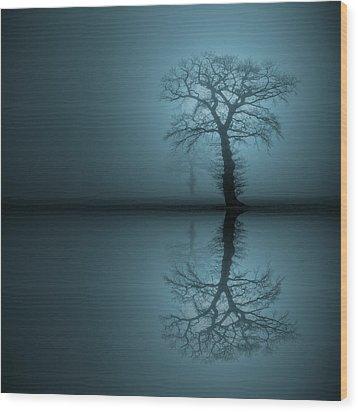 Sentinels 2 Wood Print by Andy Astbury