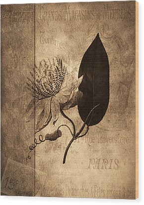 Sepia Botanical Wood Print by Bonnie Bruno