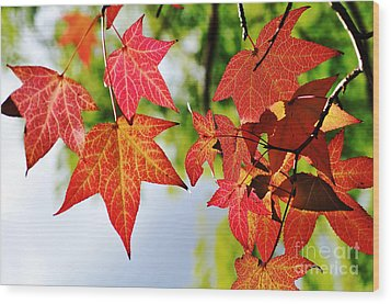 Shades Of Red Wood Print by Kaye Menner