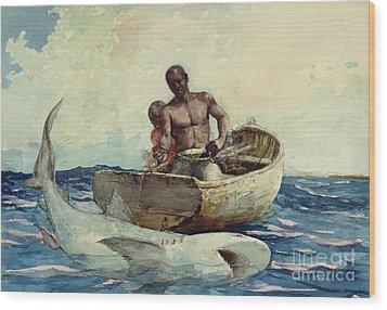 Shark Fishing Wood Print by Winslow Homer