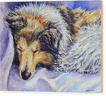 Sheltie Napster Wood Print by Lyn Cook