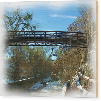 Silver City Big Ditch In Winter Wood Print by FeVa  Fotos