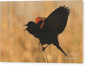 Singing At Sunset Wood Print by Betty LaRue